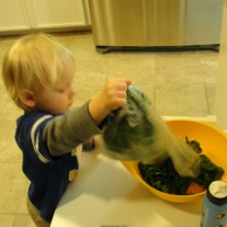 How to create a Spinach Lovin' Child