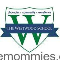 The School Dilemma – The Westwood School Review