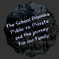 The School Dilemma – A School Review Series Part 2