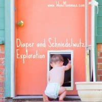 Diaper and Schniedelwutz Exploration