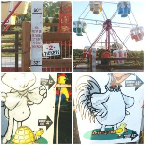 Yesterland Farm: Activities Just Outside Dallas