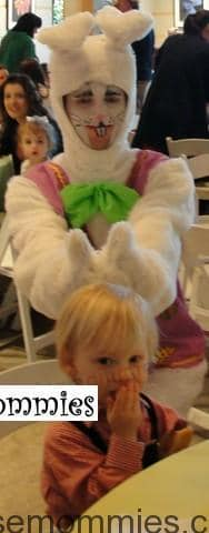 Bunny Ears_Copy